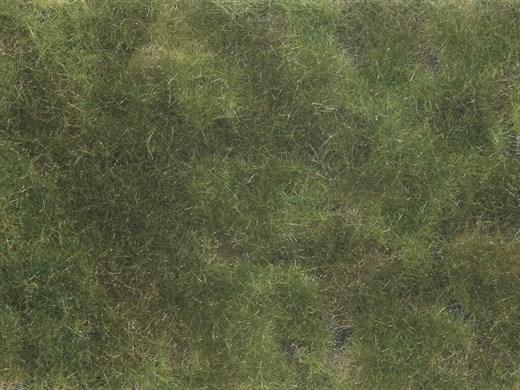 NOCH 07251 - Bodendecker-Foliage olivgrün