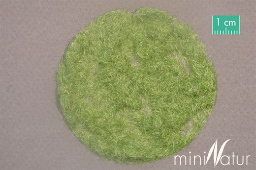Silhouette 002-23 - Gras-Flock 2 mm