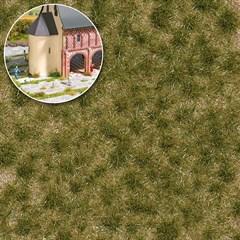 Busch 3536 - Grasbüschel 2-fbg,lang,Frühli