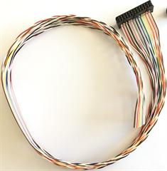 Qdecoder QD142 - Kabel (50 cm) für 12 Anschlüsse a